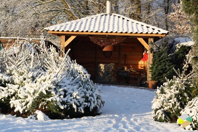 kerstbomenTiendeveen