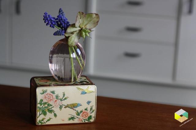 vaasje met blauwe druifjes en helleborus