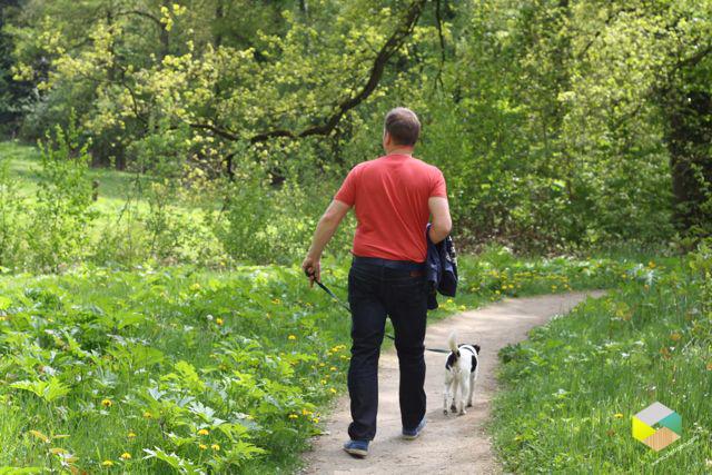 wandelen bij de Wilmersberg