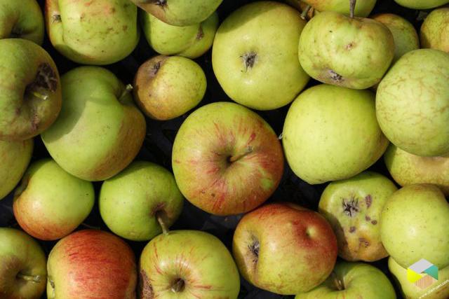 appels benoni